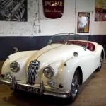 03-jaguar-xk-140-ots-1955-type-c